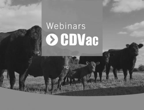 Webinars CDVac | Actualización en el Control y Diagnóstico de Tuberculosis